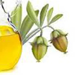 jojoba-oil-thumb